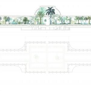 Palm House - Plan and Section