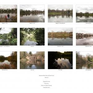 Hampstead Heath Ponds and Dams Project